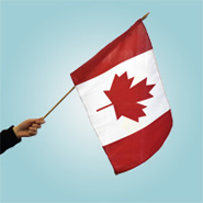 Canada Flags, Stick Flags