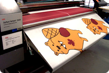 Digital printing, digitally printed flags
